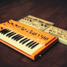 Vintage Synths - Roland SH-101, MC-202, TB-303